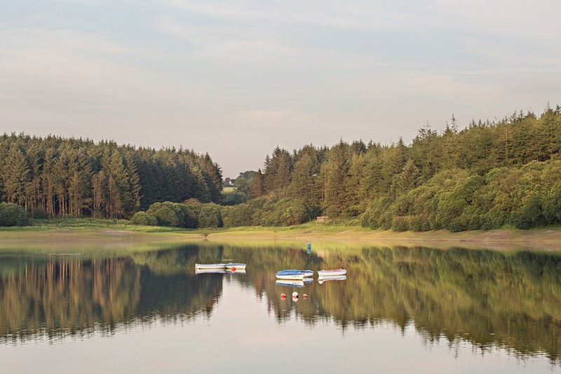 Wistle Pound Reservoir - Devon Landscapes