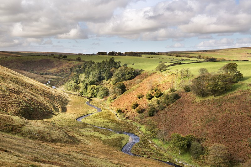 Simonsbath Valley - Exmoor