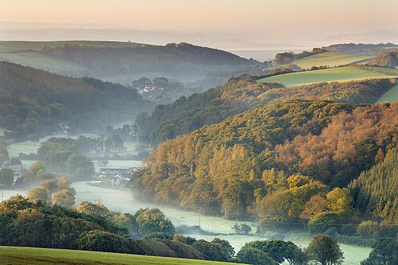 Willingcott Hill knowle - Devon Landscapes