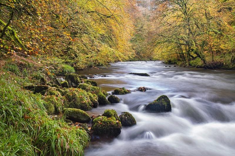 East Lyn Autumn - Exmoor