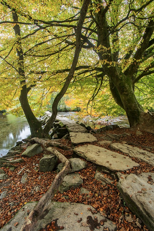 Tarr Steps Autumn - Exmoor