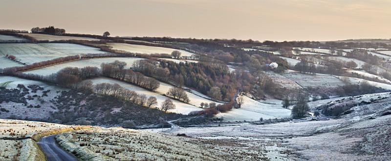 Landarce frost - Exmoor