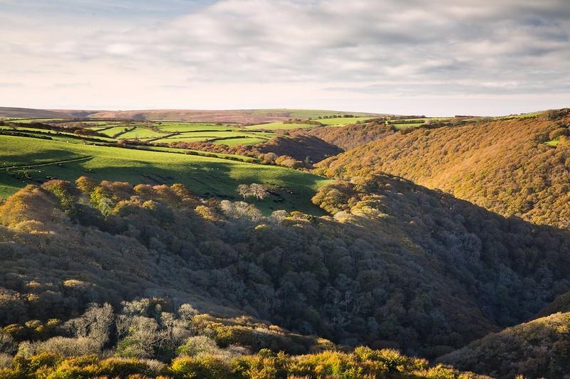 Watersmeet From Above - Exmoor