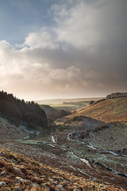 Pickel Stones Winter - Exmoor
