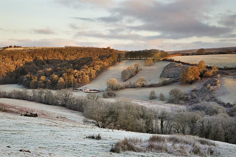 Hawkridge Frost - Exmoor