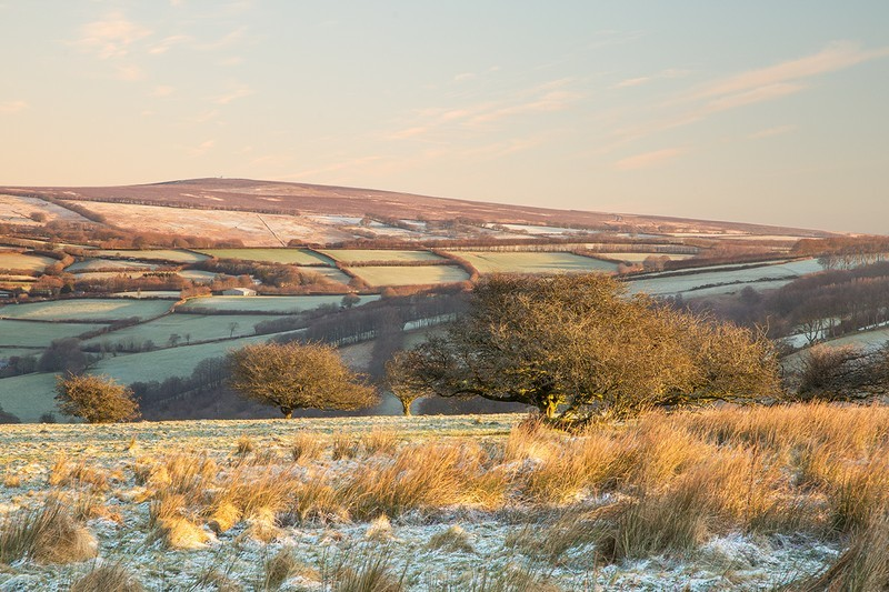 Room Hill, Exmoor - Latest images