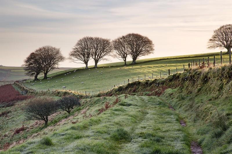 On Top of Bye Hill - Exmoor