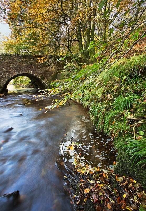 Bridge over Dane's Brook - Exmoor