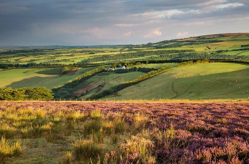 North Molton Ridge - Exmoor
