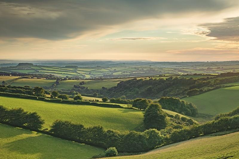 Above North Molton - Exmoor