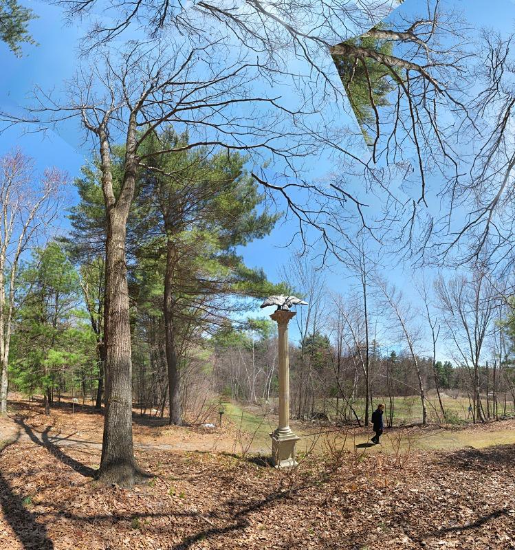 Bird Watch - Tower Hill - New England Woods