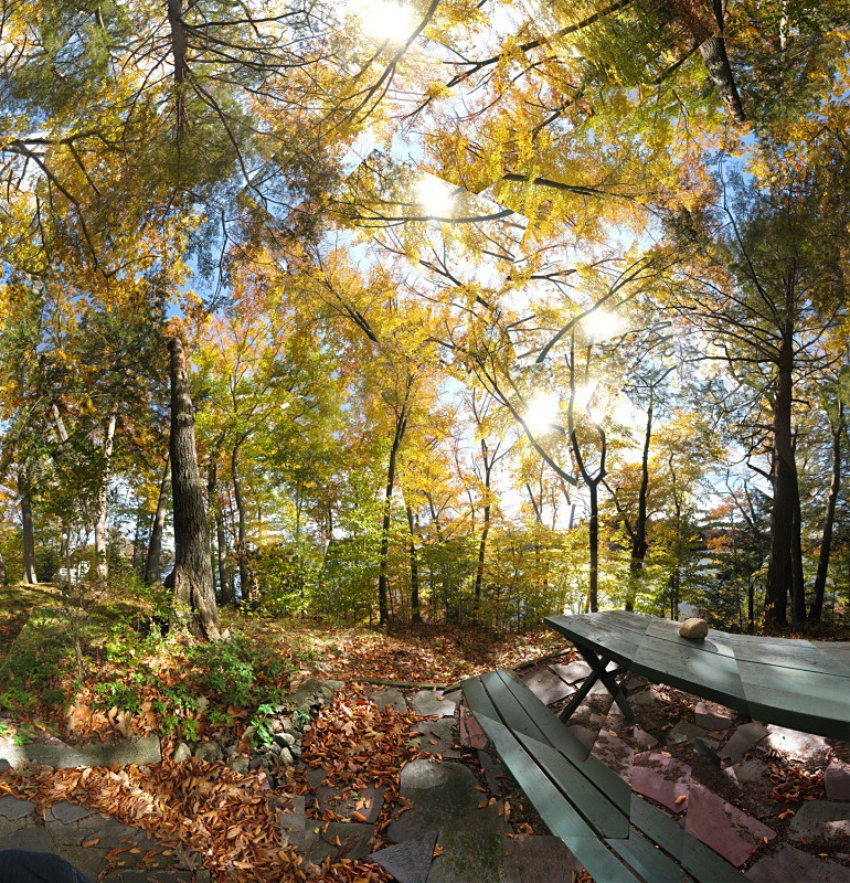 At Dudley Pond - Wayland - New England Woods