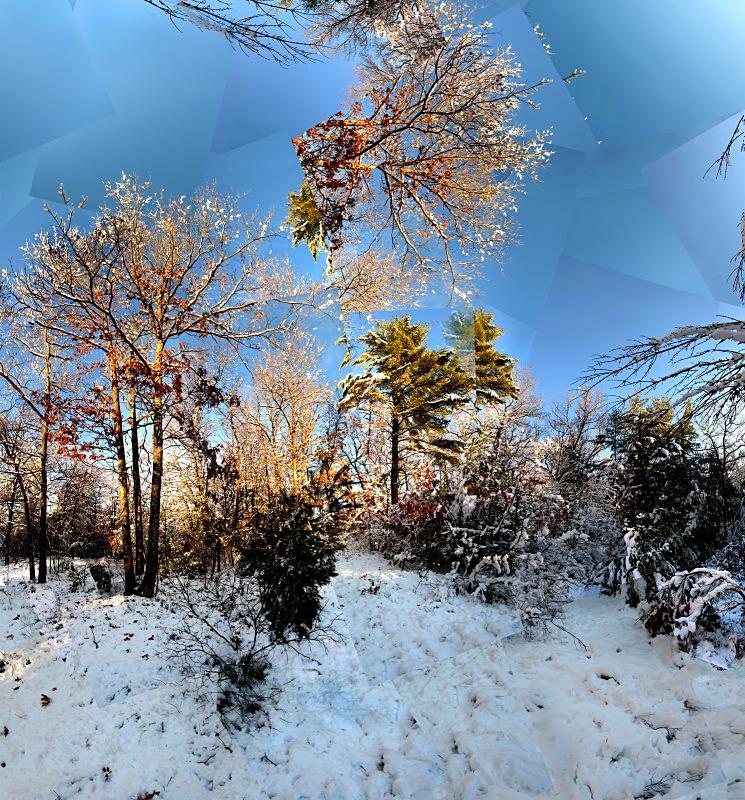 Snow storm Adams Farm -Walpole - New England Woods