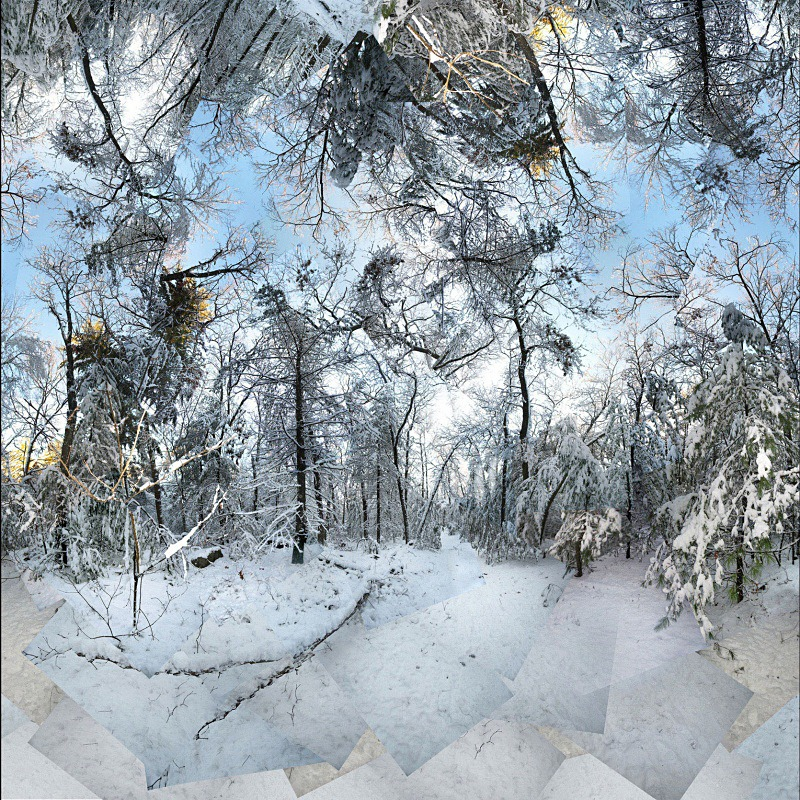 Morpheus - New England Woods