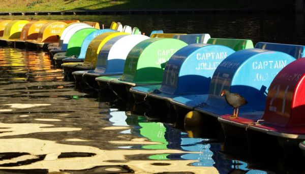 Paddle boats, River Torrens - Adelaide, South Australia