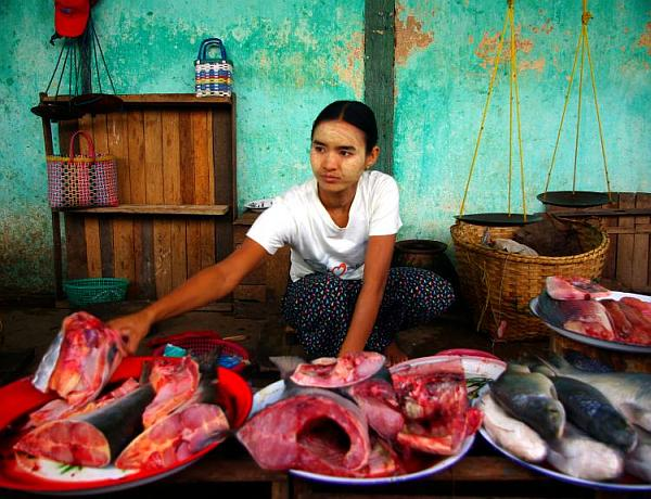 Fish market, Bagan - Burma