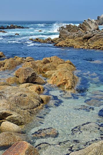 Monterey Bay - USA