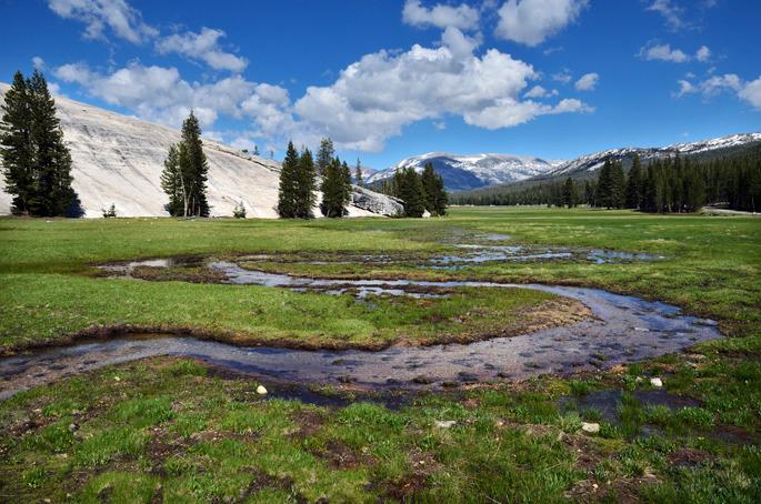 Tuolumne Meadows - Yosemite National Park - USA