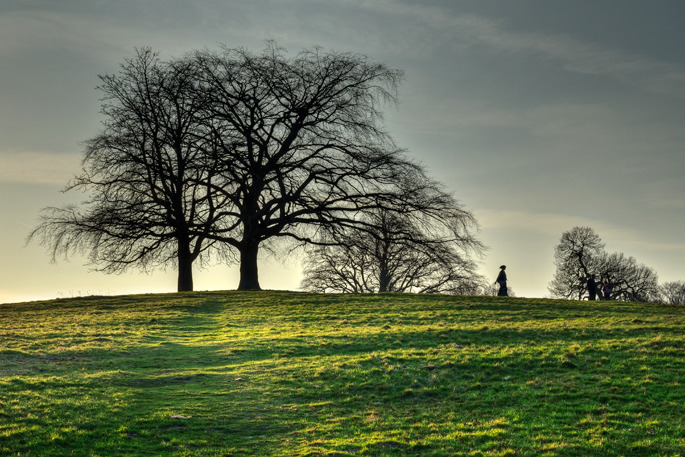 Hampstead Heath - Southern England