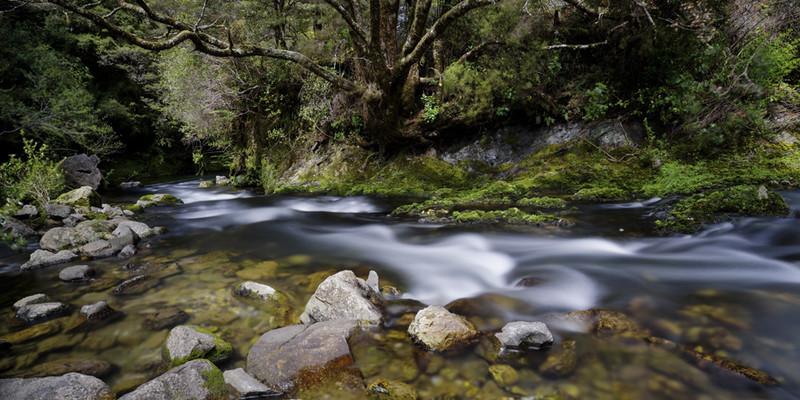 Riuwaka River - New Zealand