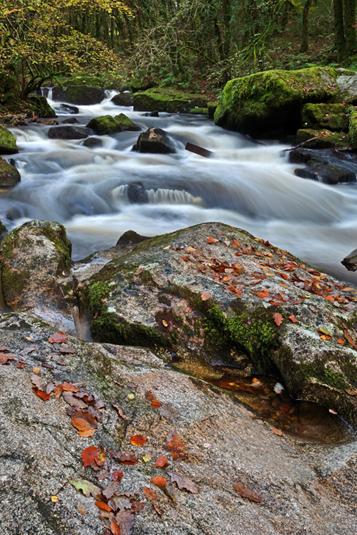 Golitha Falls - Dartmoor - Southern England