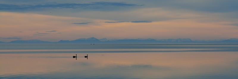 Swan Lake - Panorama