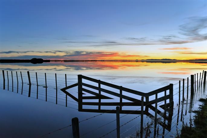 Flood - New Zealand
