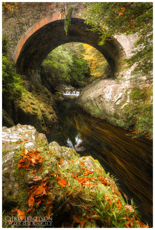 Old Bridge, Tollymore Forest