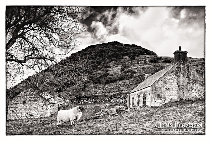 Life on the Farm, Galboly