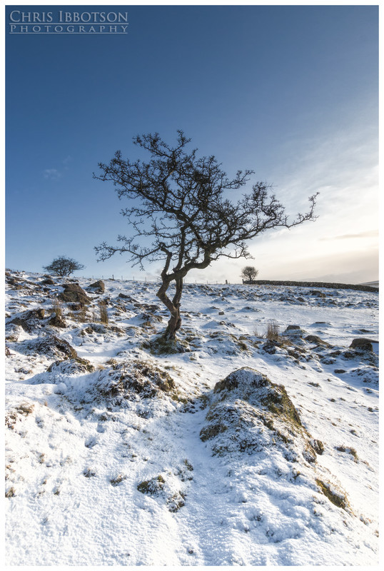 Cold and Lonely, Slemish