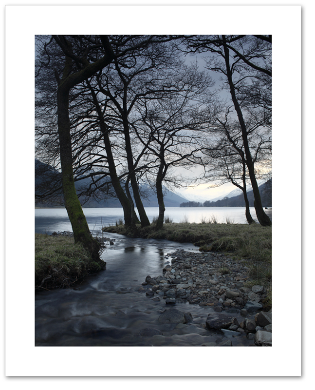 Trees of Voil, Loch Voil, Loch Lomond and the Trossachs National Park