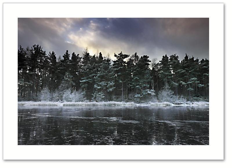 Freezer, Devilla Forest, Fife