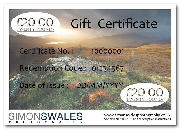 £20.00 Gift Certificate