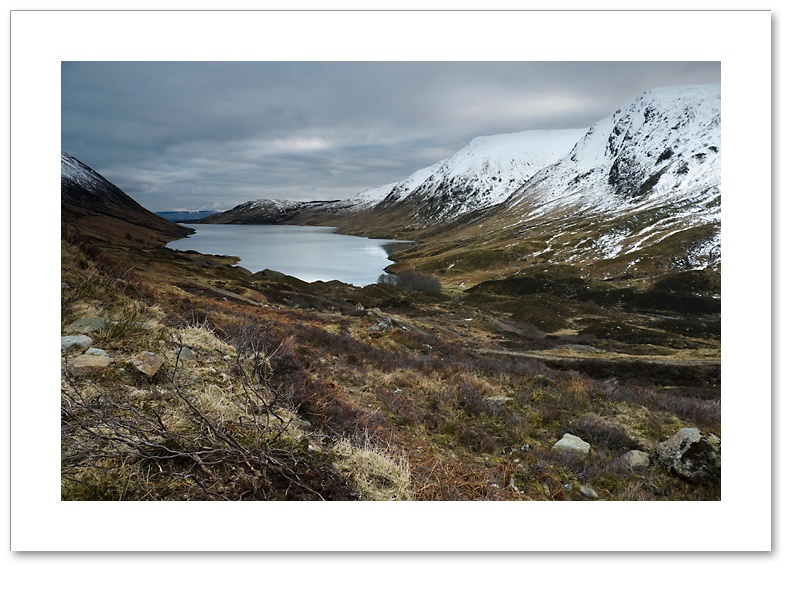 Grouse country, Loch Turret, Perthshire