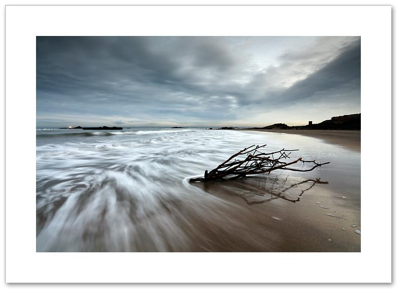 Seafield seaweed, Kirkcaldy, Fife