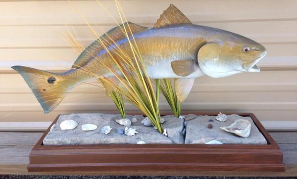 KAMMIE - Fish