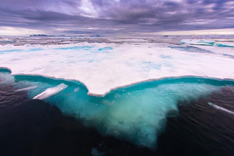 svalbard ice floe