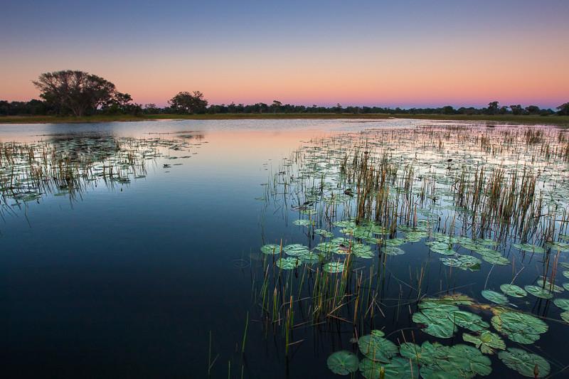 okovango delta botswana
