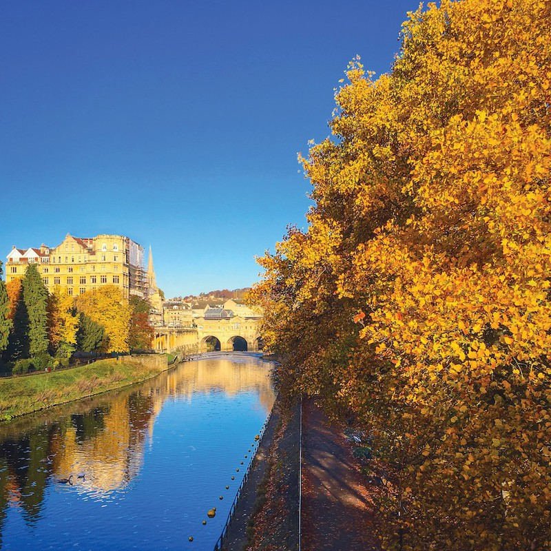 Poplars and Pulteney Bridge, Bath EDC255  only available as a greeting - Bath