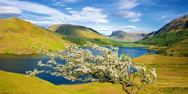 Crummock Water and Buttermere  EDC 272  available as greeting card - Lake District