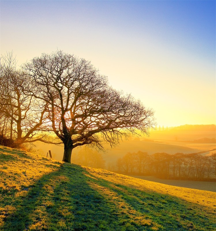 A Winter Dawn. EDC 299 - England