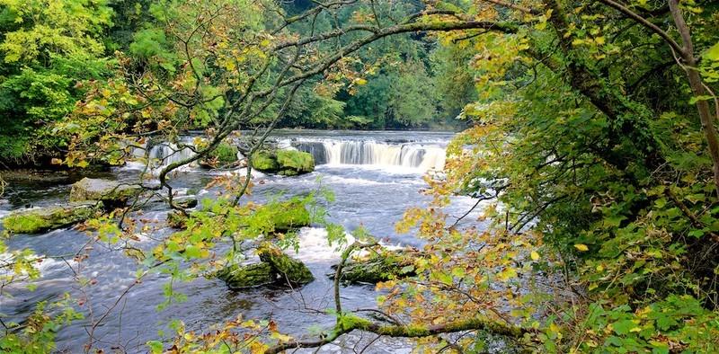 Aysgarth Falls, Wensleydale, Yorkshire Dales - England