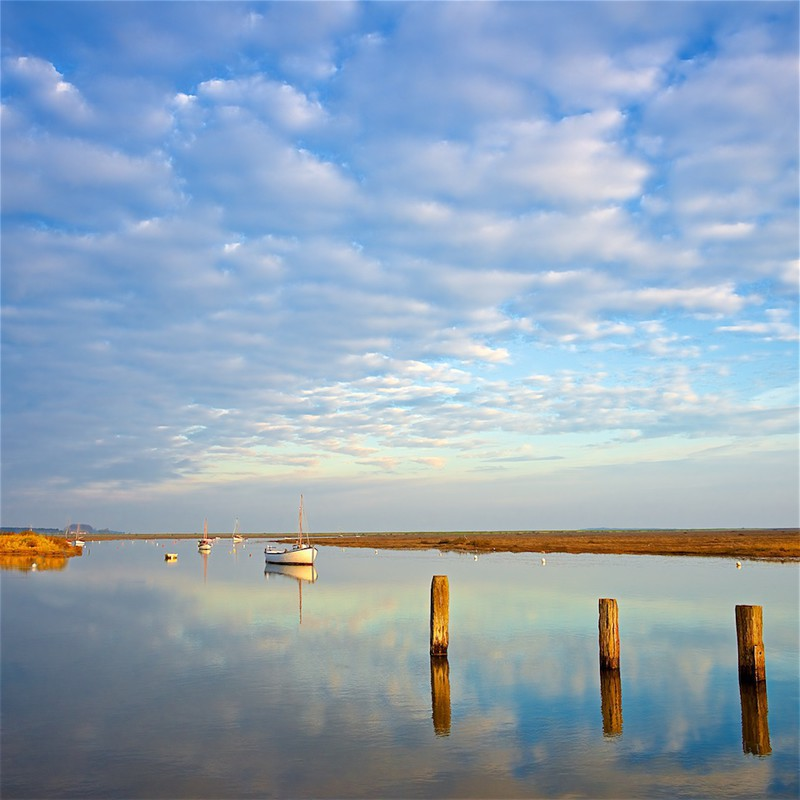 Morning Calm, Burnham Overy Staithe, Norfolk EDC245 - England