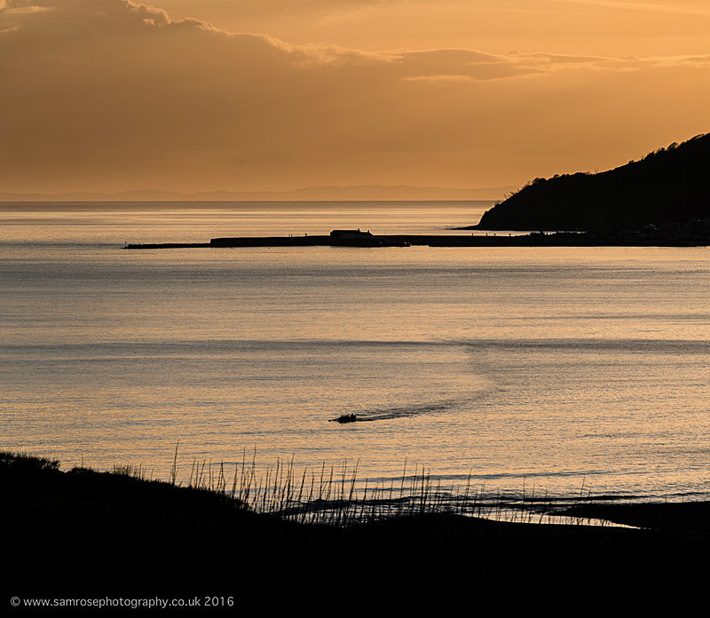 Gig rowing in Lyme Bay - Dorset Photos