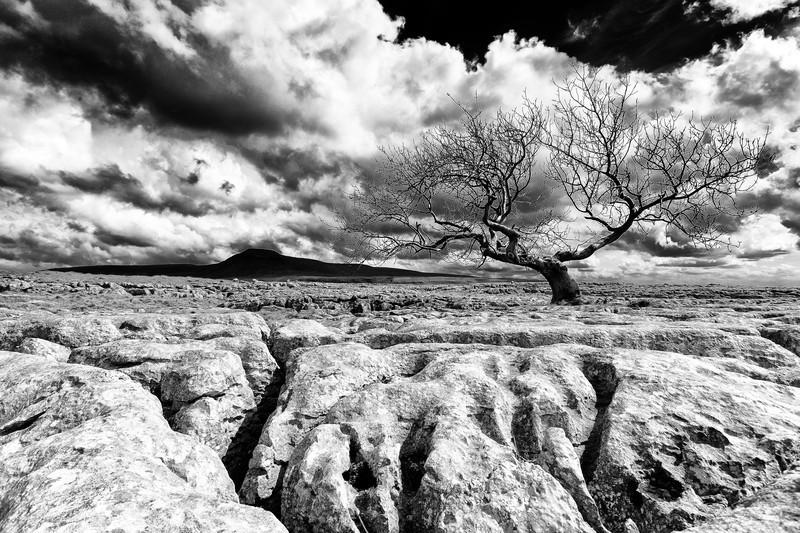 - Landscapes - Monochrome
