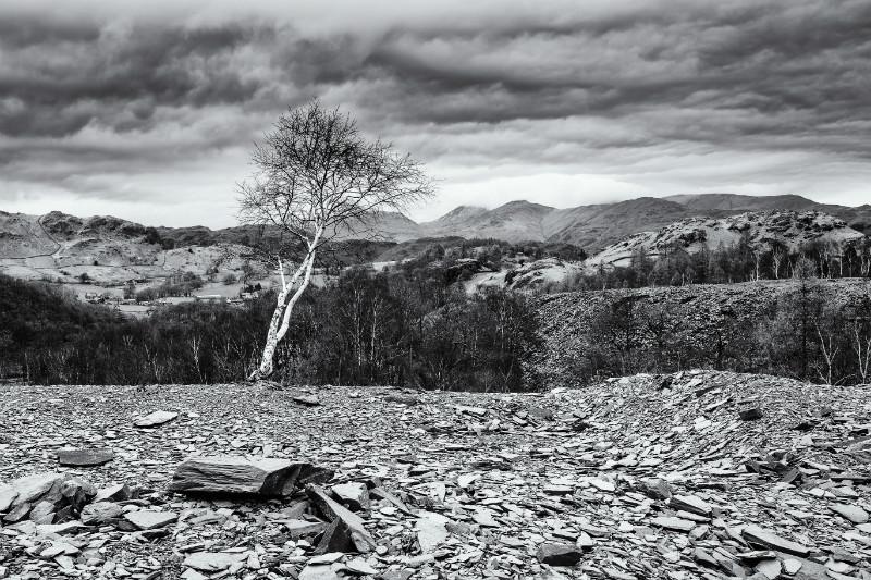 Hodge Close Quarry - Landscapes - Monochrome