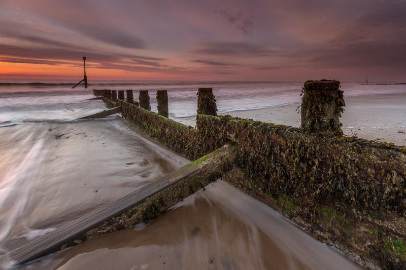 Dawn Light - Hornsea