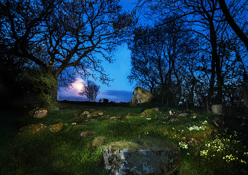 Goward Dolmen - Irish Landscapes