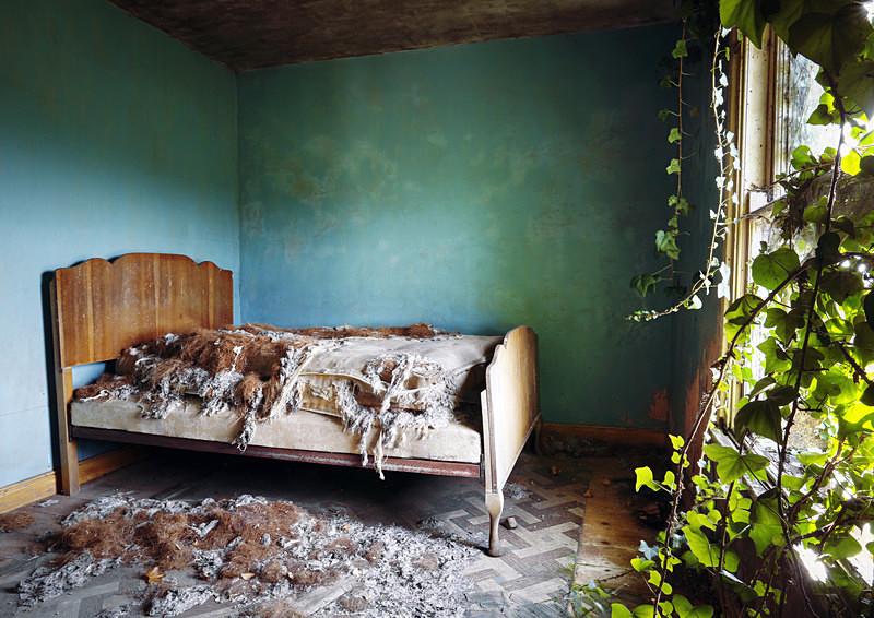 The Holy House (iv) - 'Abandoned Ireland'