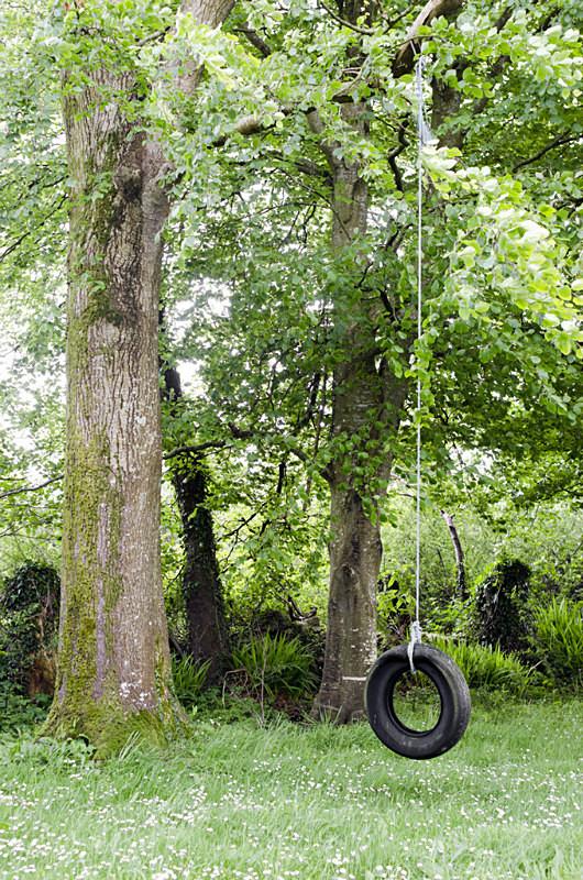 2 - Tyre Swings